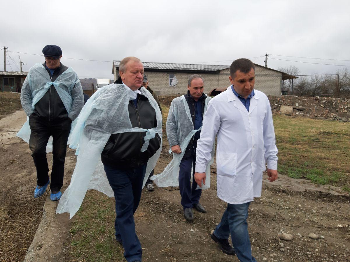 Комплекс по выращиванию утки построен в Северной Осетии