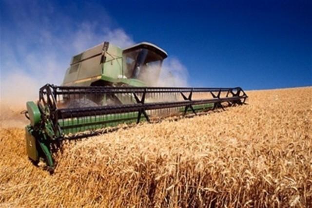 Фермер должен зарабатывать не менее 5 тысяч рублей с гектара – Вячеслав Битаров