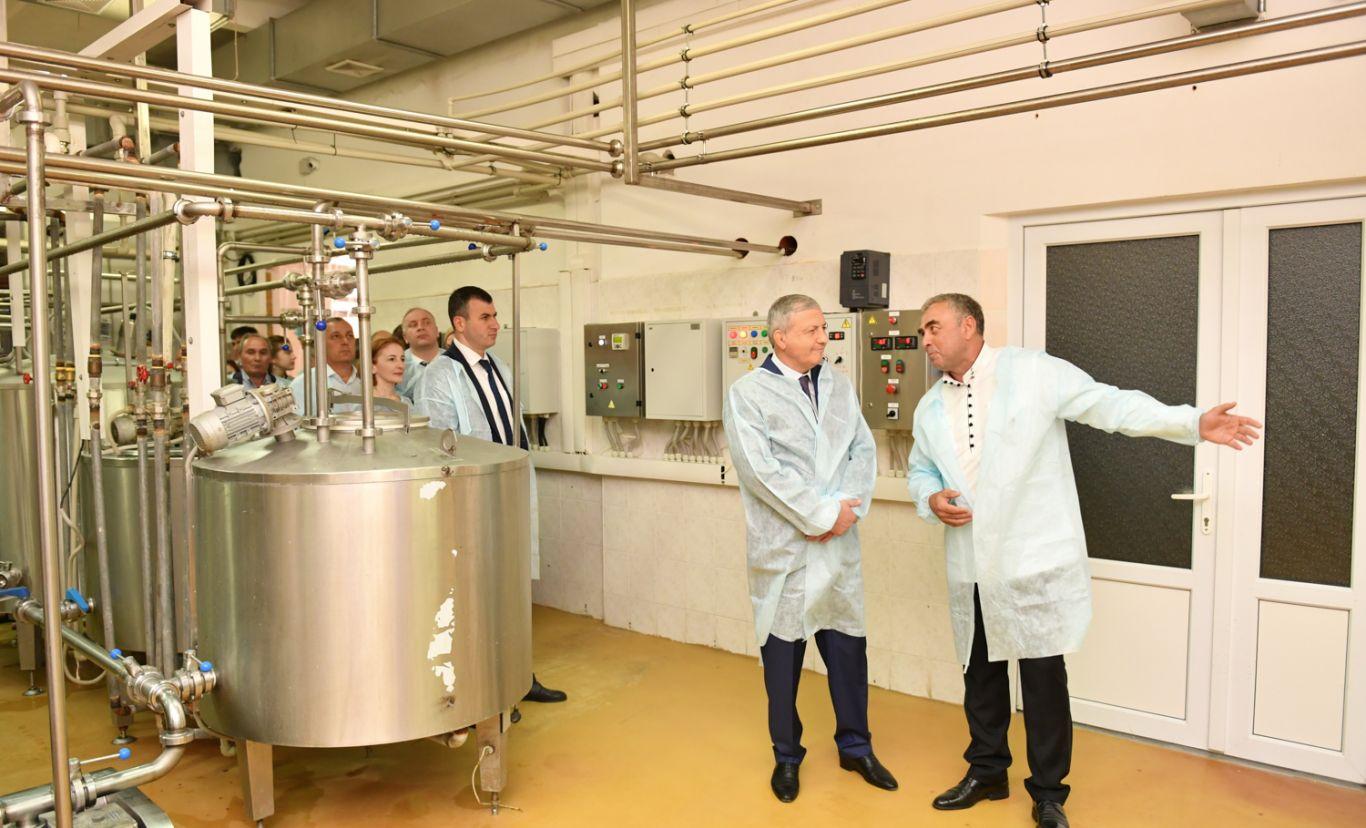 Программу развития молокоперерабатывающей отрасли разработают в Северной Осетии
