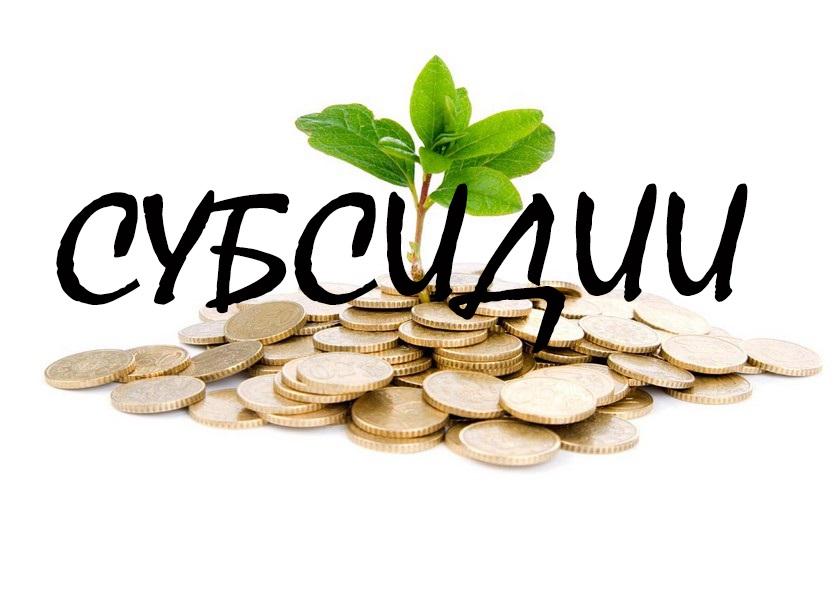Жители Северной Осетии получат по 200 тысяч рублей на создание или развитие собственного бизнеса